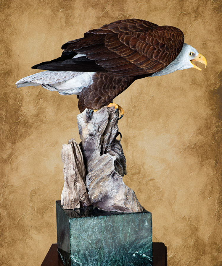 Floyd Scholz Master Carver Bald Eagle Carving Quot Vigilance Quot